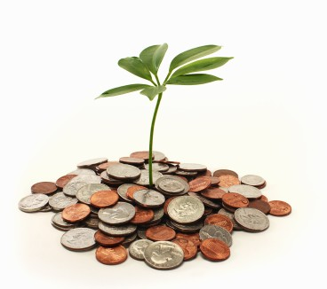 Image, plant growing in  coins