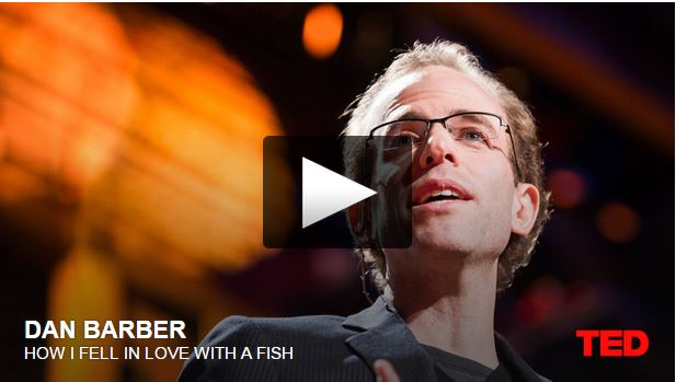 How I fell in love with a fish